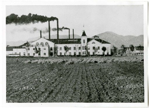 Photo and Statistics of Logan, Utah's Amalgamated Sugar Beet Factory, 1913<br />