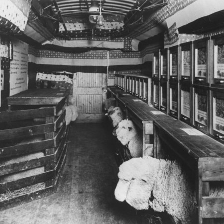 Lecture train from Agricultural College of Utah, 1904;