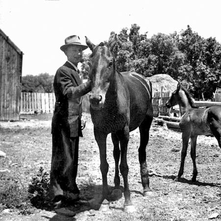 SCAFOLK067-DNO-0062_GHJR020-4a-Joseph-B-Richards-Horses.jpg