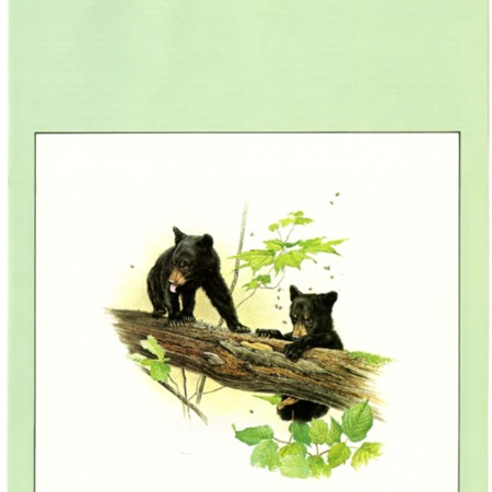 SCABOOK072-C03-1977-Cata02-001.pdf