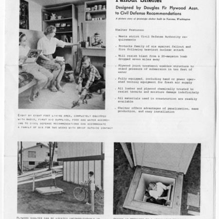 Family Plywood Fallout Shelter