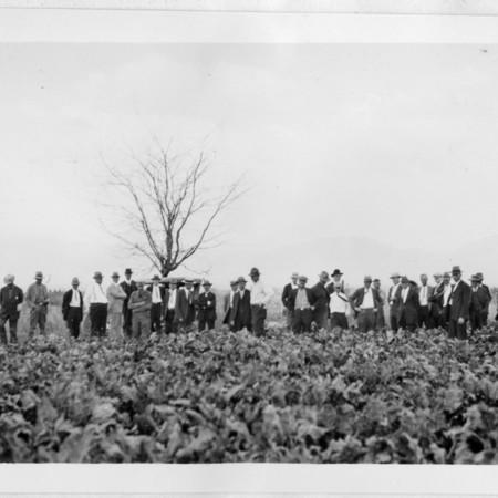 Farmers on field tour