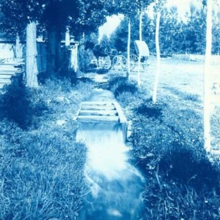 8 Irrigation Canal.jpg
