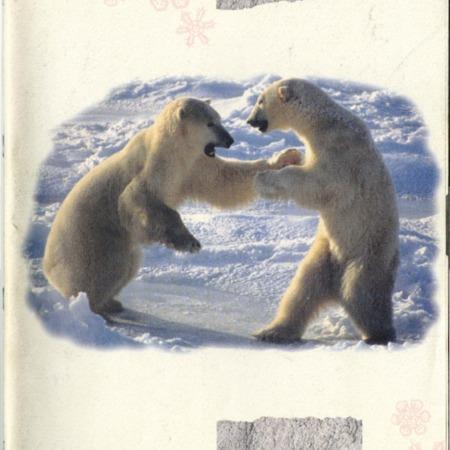 SCABOOK072-V02-1993-Cata01-001.pdf