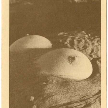 Moonstone, 1980