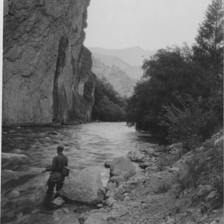 Unidentified man fly-fishing on the Logan River, Logan Canyon, Utah, July 21, 1937