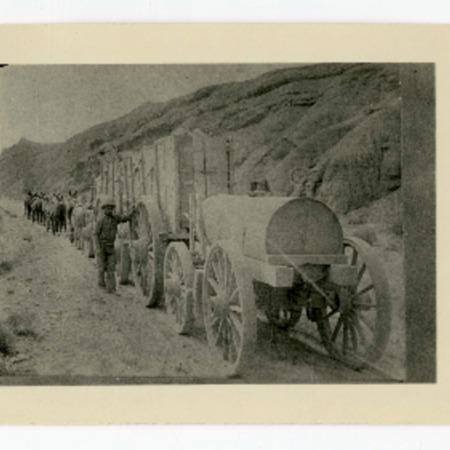 Twenty-mule train near Calico, California, 1905