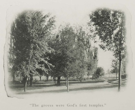 Image of BYC campus grounds from the 1907 BYC Views booklet