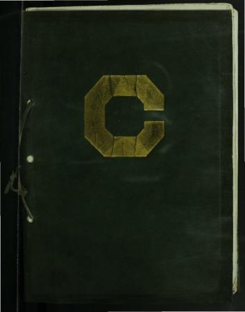 The Crimson Annual, 1919