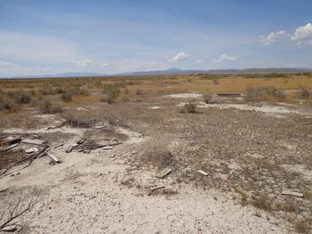 Topaz site with wood debris