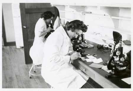 Nurses looking through microscopes at slides