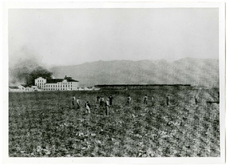 Photo and Statistics of Lewiston, Utah's Amalgamated Sugar Beet Factory, 1913<br />