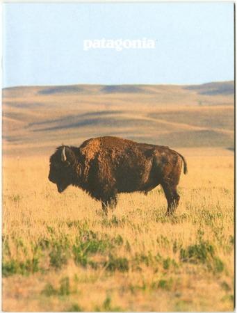 Patagonia, bison, 2015