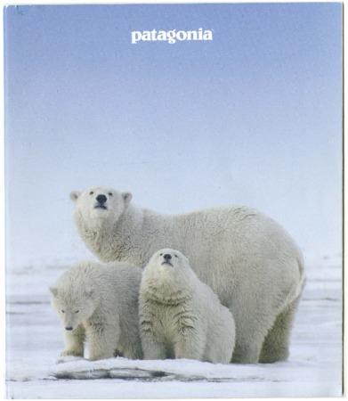 Patagonia, polar bears, 2016