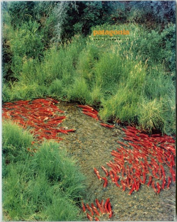 Patagonia, Spring/Summer 1993
