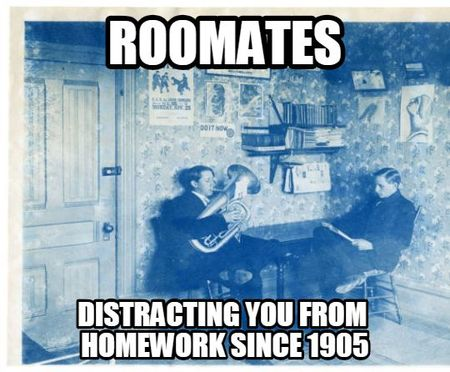 Meme_ThorneAbby5_Roomates- Distracting you from homework since 1905.jpg