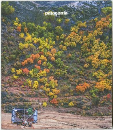 Patagonia, fall trees, 2017