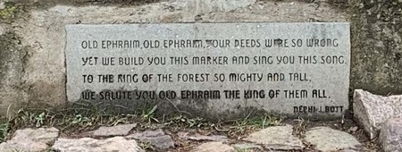 Photograph of poem on Old Ephraim monument, July 2019