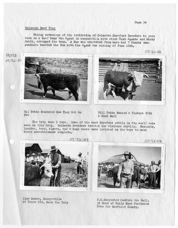 Cal Tebbs with Bull